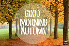 Good morning, Autumn :)