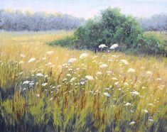 """Morning Light#3 by Kathy McDonnell Pastel ~ 16"""" x 20"""""""