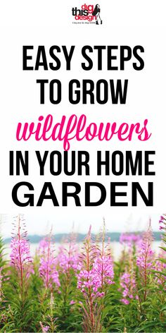 Wildflowers stand out in a typical suburban garden where most yardslook-alike with a neatly cultivated lawn and traditional border plants. We know that Mother Earth allows these flowers to decorate her yard so why not you? Digthisdesign.net