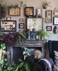 Butterflies and plants collection in the boho interior – Interior Design Interior And Exterior, Interior Design, Interior Plants, Deco Zen, Sweet Home, Bohemian Decor, Home Decor Inspiration, My Room, Decoration