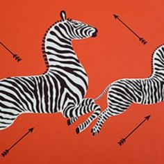 Scalamandre Zebras Orange Wallpaper