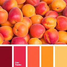 Color palettes 771030398678133428 - Color Palette More Source by Orange Color Palettes, Color Schemes Colour Palettes, Fall Color Palette, Colour Pallette, Color Combos, Orange Color Schemes, Orange Palette, Color Harmony, Color Balance