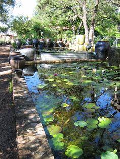 raised ponds