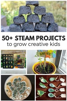 A year's worth of STEAM activities for kids to inspire the next generation of scientists, engineers, artists and creators! Stem Science, Preschool Science, Science For Kids, Physical Science, Science Classroom, Earth Science, Steam Activities, Science Activities, Science Experiments