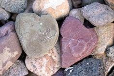 Heart Shaped Rocks <3