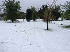 #snow #lidsvegas