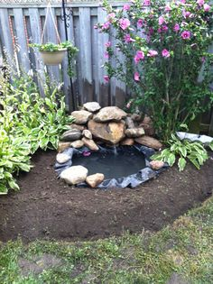 Pond made from an old tractor tire. Needs some rocks and flowers. My little oasis in my yard.