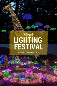 Annual Garden of Morning Calm Lighting Festival in Korea where thousands of lights are strung up around the garden to illuminate the sky! Visit between December and March!