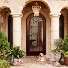 Ambella Tuscan 48 Inch Exterior Glass Door with Hand-Forged Iron Accents, Hardwood Construction, Unfinished Tuscan Style Homes, Tuscan House, Tuscan Bedroom, Exterior Doors With Glass, World Decor, Tuscan Design, Mediterranean Home Decor, Mediterranean Architecture, Tuscan Decorating