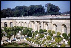 The Orangerie, Versaille Garden