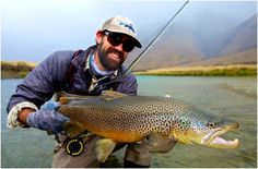 Insane NZ Brown
