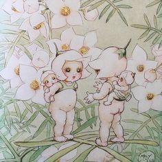 May Gibbs  creator of the gumnuts snugglepot & Cuddlepie  This is a picture of her Wildflower babies from my book published in 1916#maygibbs #gumnuts #wildflowerbabies