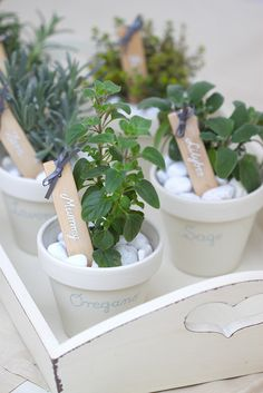 These look quite simple, spray paint some pots and pebbles, and put herbs in pots very effective and not expensive