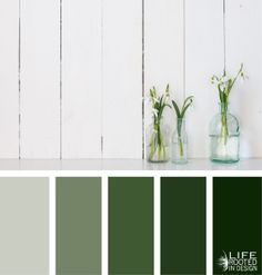 A review in color theory: Using a color scheme to create a balanced and harmonized color palette: Monochromatic - Life Rooted in Design