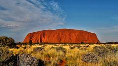 Uluru and golden spinefex