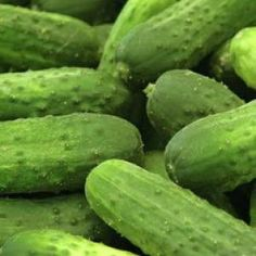 Organic Seed - Cucumber Seeds - National Pickling Cucumber