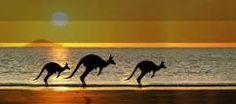 Because I love Australia