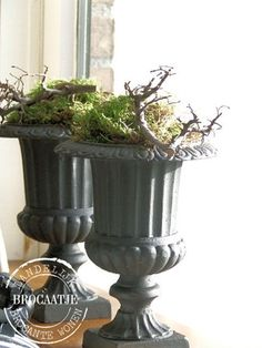 Gorgeous urns (not sure about what's in them though! Parisian Decor, Seasonal Decor, Holiday Decor, Classic Garden, Winter Flowers, My Secret Garden, Rustic Elegance, Window Sill, Floral Bouquets
