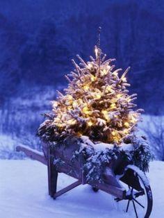 20 Outdoor Décor Ideas With Christmas Lights 6