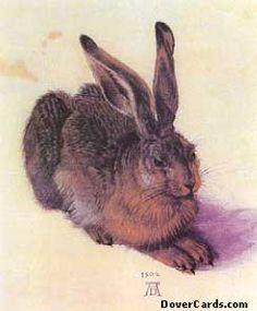 Albrecht Dürer (German, Northern Renaissance, The Hare (Der Feldhase) (also known as: The Young Hare; The Wild Hare), Watercolor and bodycolor (gouache) on a cream wash Albrecht Durer, Albertina Wien, Painting & Drawing, Watercolor Paintings, Watercolor Paper, Watercolor Artists, Artwork Paintings, Watercolor Animals, Watercolor Print