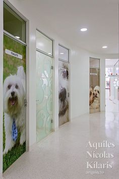 Indoor dog washing station glass door for when the dog shakes the arquiteto aquiles ncolas klaris projetos corporativos clnica veterinria solutioingenieria Image collections