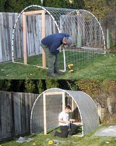 So kann man selber und günstig ein Treibhaus bauen