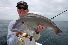 Bottom Fishing, Water, Gripe Water