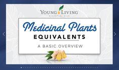 About: MEDICINAL PLANTS Medicinal Plants, Young Living Essential Oils, Medicine, Bloom, Healing Herbs, Medical, Herbal Medicine