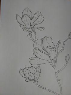 Flowers sketch pencil °>°