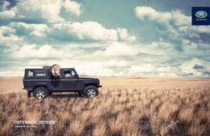PUBLICITY, land rover, lion, humor, field, cloudy sky, art