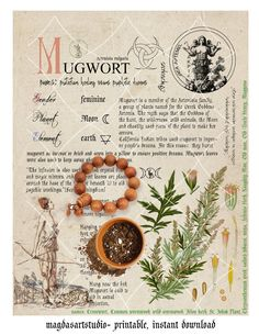 Witchcraft Herbs, Green Witchcraft, Magick, Wicca Herbs, Magic Herbs, Herbal Magic, Herb Meanings, Eclectic Witch, Herbs For Health