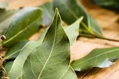 Bay Leaf: Nutrition Facts, Health Benefits, Side Effects & Recipes – Appreciate Leave In, Bay Leaves, Plant Leaves, Laurus Nobilis, Salvia Officinalis, Laurel Tree, Homemade Air Freshener, How To Clean Silver, Organic Herbs