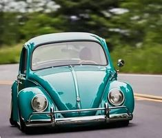 Beetle Bug, Vw Beetles, Rat Look, Beautiful Bugs, Car Goals, Vw Cars, Car Wheels, Modified Cars, Vans Classic