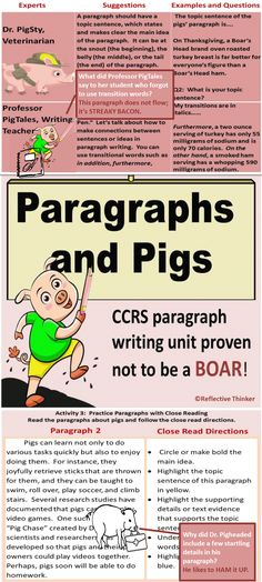 Common Core Aligned Paragraphs and Pigs: Teaching Paragraph Writing with Humor Teaching Paragraphs, Topic Sentences, Paragraph Writing, Health And Physical Education, Health Class, Middle School Writing, Thing 1, Learning Styles, Creative Teaching
