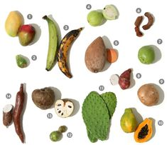 Visual Guide to LATIN AMERICAN & CARIBBEAN PRODUCE:  Get to know the fruits and vegetables from Central and South America      Read More http://www.epicurious.com/articlesguides/seasonalcooking/farmtotable/visualguidelatinamericanproduce#ixzz1a1B0xu3s