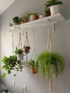 Indoor Plant Wall, Indoor Garden, Indoor Plants, Hanging Plant Wall, House Plants Hanging, Room With Plants, House Plants Decor, Office With Plants, Decoration Plante
