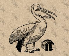 Vintage clipart Pelican Top Hat gentleman Bird Printable Digital Image instant download HQ 300dpi PNG and JPG prints (JPG images are on a white background and PNG images are on a transparent background). For more printable antique Pelican graphics visit www.etsy.com/shop/UnoPrint/search?search_query=Pelican __________________________ DELIVERY *INSTANT DOWNLOAD* All images are immediatelly downloadable after you purchase. __________________________ PRODUCT DETAILS 1) You...