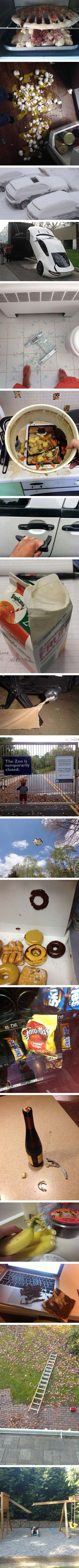 Your day could be worse. I'm not sure if the little boy at the zoo is the worst, or the donut with no frosting...