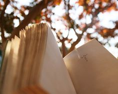 """Fall""ing in love with books."