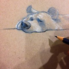 A Bear sketch ✏️ at the SF Zoo. | Use Instagram online! Websta is the Best Instagram Web Viewer!