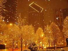 Christmas in Chicago, one of the best cities ever, can't wait to see it decorated for Christmas over my bd weekend!