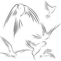 Sparrow+bird+outline