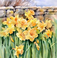 The Spring daffodils are out and to celebrate here& today& rendition of an old favourite. Daffodils against a dry stone wall. These flo. Watercolor Negative Painting, Watercolor Flowers, Painting & Drawing, Art Floral, Gravure Photo, Fleur Orange, Botanical Art, Beautiful Paintings, Colorful Paintings