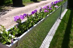 Re-purposed rain gutters - attached to the top of our chain link fence!