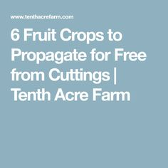 6 Fruit Crops to Propagate for Free from Cuttings | Tenth Acre Farm