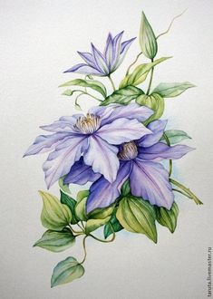 Celebrate Each New Day: Photo Botanical Drawings, Botanical Illustration, Botanical Prints, Watercolor Cards, Watercolor Flowers, Watercolour, Fabric Painting, Painting & Drawing, Flower Prints