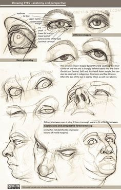 Drawing eyes - by greyfin on DeviantArt . Character Drawing Illustration