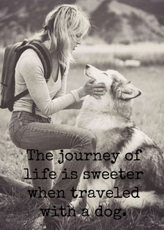 travel your life with #Husky | www.fordogtrainers.com