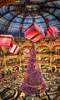 "Travel Inspiration for France - Christmas Tree of the "" Galeries Lafayette"" in Paris, France. Amazing!"