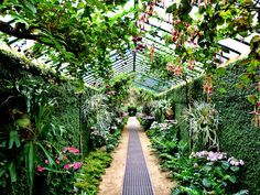 Are you tired of sunflowers not being in season? Provide customers the luxury of having any plant they desire all year round. Made-in-China.com suppliers carry a diverse range of greenhouses that will leave customers thinking green all year long!